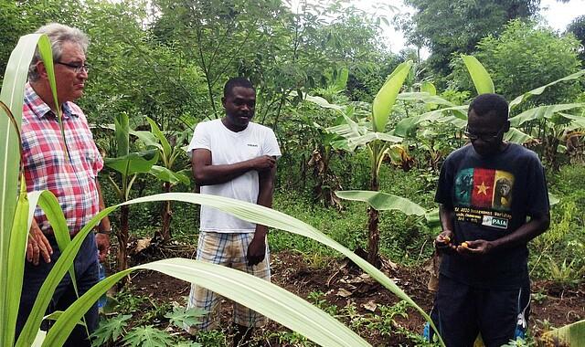 Treffen mit einem Teilnehmer des Kleinbauernkurses auf seinem Feld, in der Mitte Robert Brunet, Dekan der landwirtschaftlichen Fakultät der UCNH